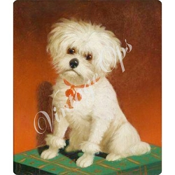 Sierra Valley Flour Sack Towel Flour Sack Towel | Is it a Poor Little Dog?   by Carl Reichert