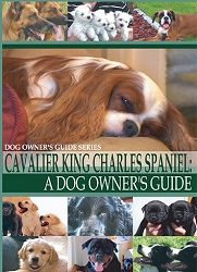 Cavalier King Charles Spaniel: A Dog Owner's Guide- DVD FREE SHIPPING