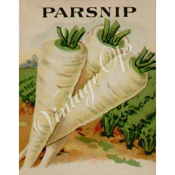 Sierra Valley Flour Sack Towel  | Parsnip