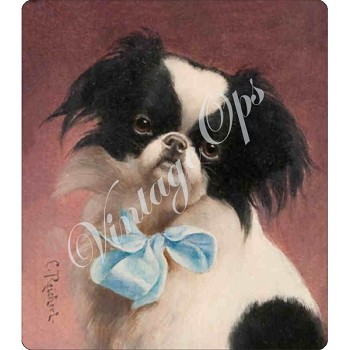 Sierra Valley Flour Sack Towel | Japanese Chin by Carl Reichert