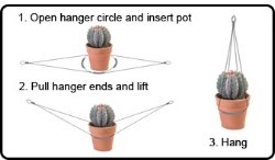 WiseHanger™, Lasso-n-Hang, Expandable Plant Hanger