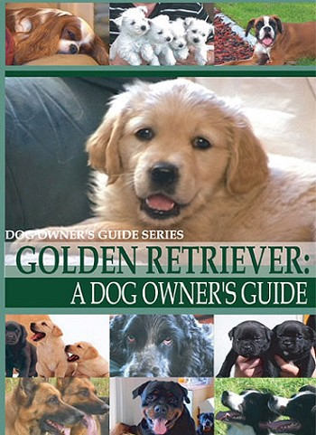 Golden Retriever:  A Dog Owner's Guide- DVD FREE SHIPPING
