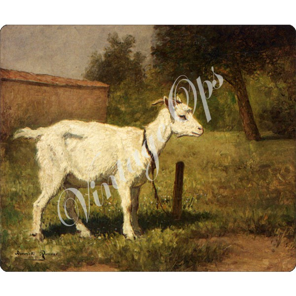 Sierra Valley Flour Sack Towel | A Goat in a Meadow
