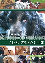 English Cocker Spaniel:  A Dog Owner's Guide- DVD FREE SHIPPING