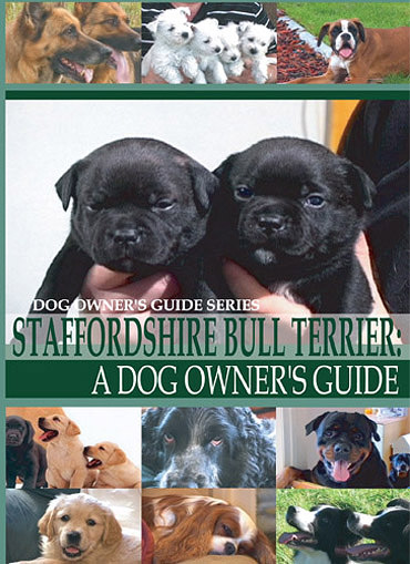 Staffordshire Bull Terrier: A Dog Owner's Guide -DVD FREE SHIPPING